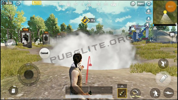 Throwable Weapon Smoke Grenade