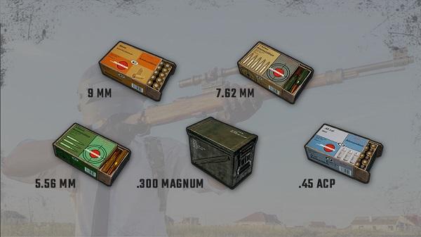Realistic Bullet Mark Based on Bullet Caliber