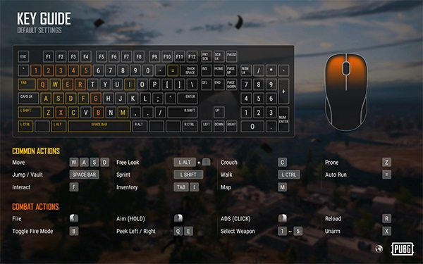 How to use Controls in PUBG Lite PC